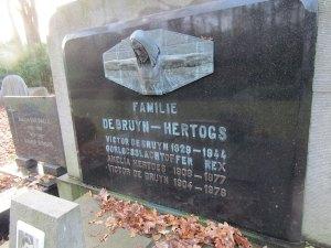 Familie Debruyn - Rex (c) Ricky Van Dyck